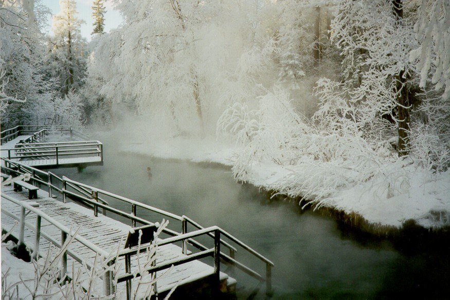 Liard Hot Springs on the Alaskan Highway - Copyright 1999 - Jennifer Stephenson